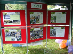 ACCG achievements